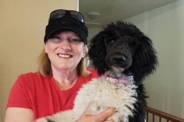 Ruby - Standard Poodle - SERVICE DOG